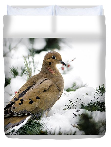 Holiday Dove Duvet Cover by Christina Rollo