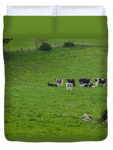 Holsteins Duvet Cover by Bill Wakeley