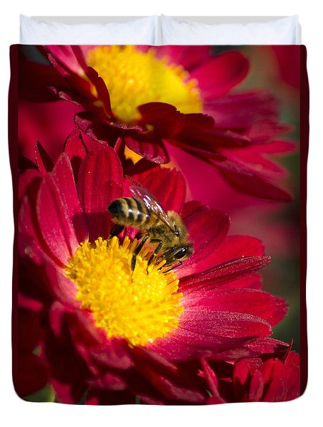 Honey Bee And Chrysanthemum Duvet Cover by Christina Rollo