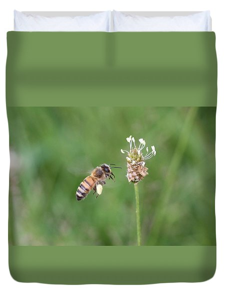 Honeybee And English Plantain Duvet Cover