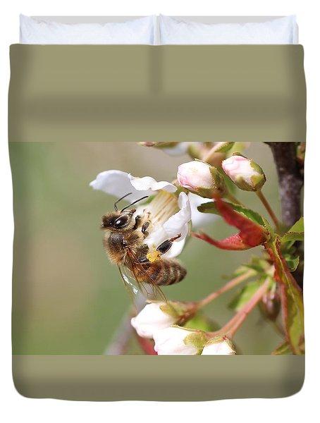 Honeybee On Cherry Blossom Duvet Cover
