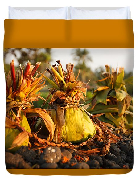 Hookupu At Sunset Duvet Cover