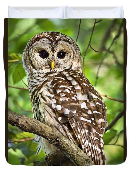Duvet Cover featuring the photograph Hoot Owl by Christina Rollo