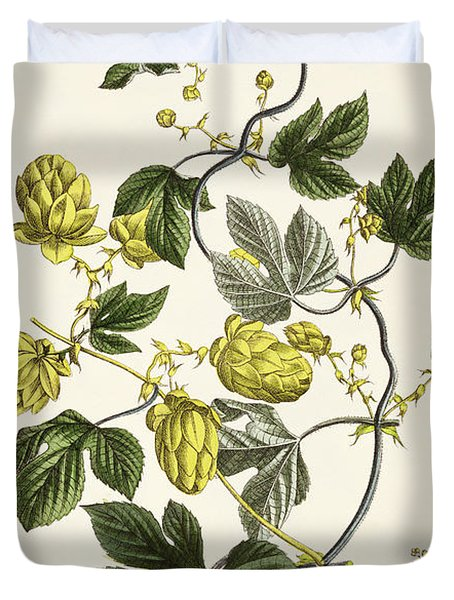 Hop Vine From The Young Landsman Duvet Cover by Matthias Trentsensky