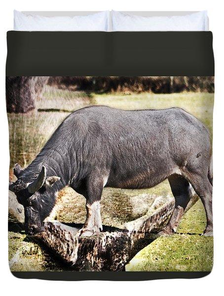 Horn Of A Buffallo Duvet Cover