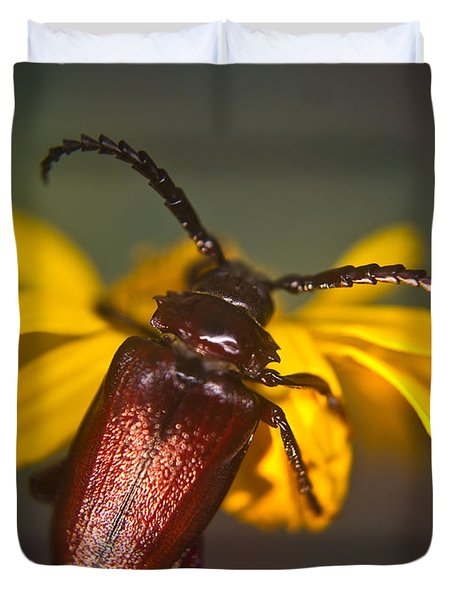 Horned Beetle Duvet Cover