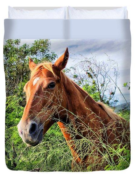 Duvet Cover featuring the photograph Horse 1 by Dawn Eshelman