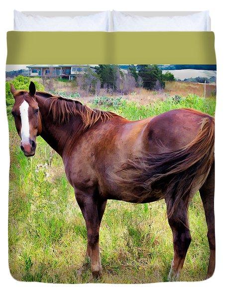 Duvet Cover featuring the photograph Horse 5 by Dawn Eshelman