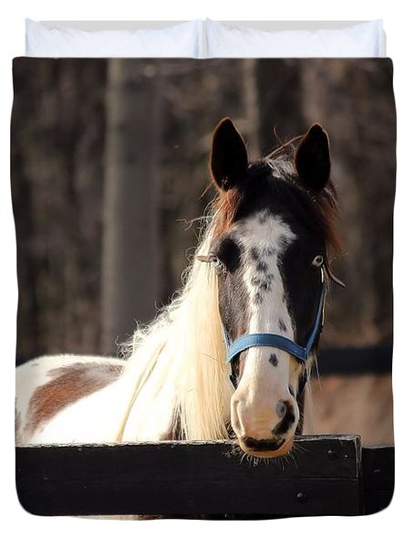 Horse At The Gate Duvet Cover