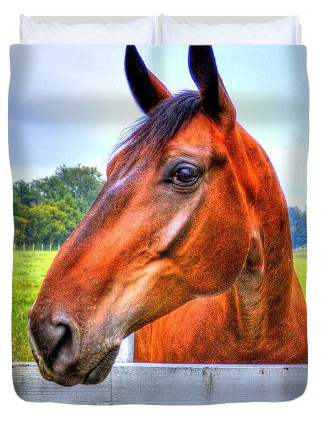 Horse Closeup Duvet Cover by Jonny D