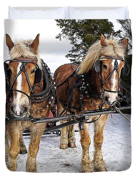 Horse Drawn Sleigh Duvet Cover by Edward Fielding