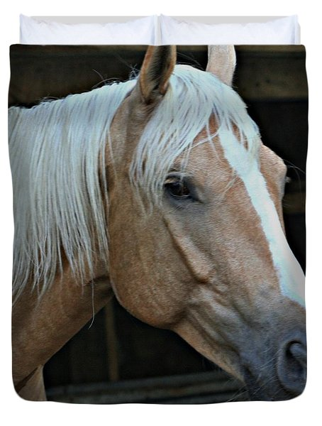 Horse Feathers Duvet Cover by Barbara S Nickerson