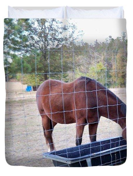 Horse Grazing Duvet Cover by Joseph Baril