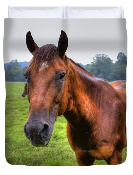 Horse In A Field Duvet Cover by Jonny D