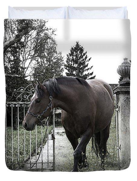 Horse In Europe Duvet Cover