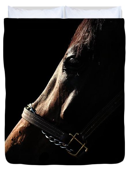 Horse In The Shadows Duvet Cover