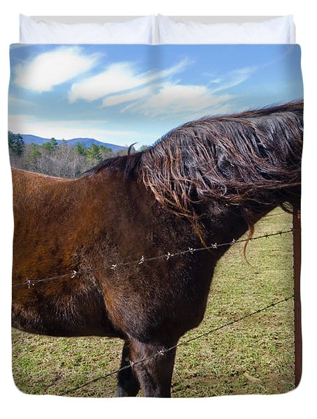 Horse Duvet Cover by Melinda Fawver