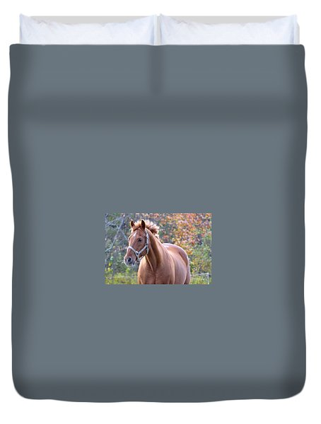 Duvet Cover featuring the photograph Horse Muscle by Glenn Gordon