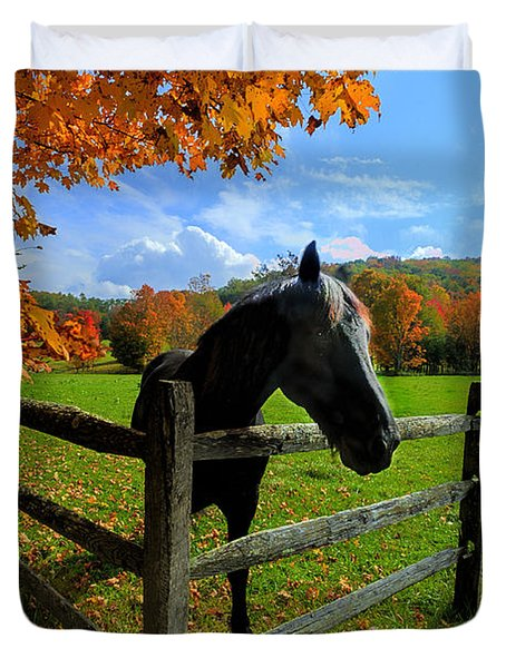 Horse Under Tree By Fence Duvet Cover by Dan Friend