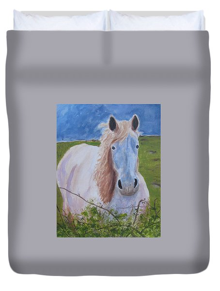Horse With Stormy Skies Duvet Cover by Dawn Dreibus