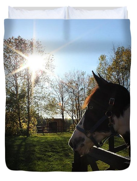 Horse With Sunburst Duvet Cover