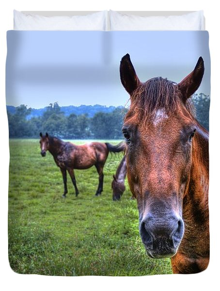Horses In A Field Duvet Cover by Jonny D