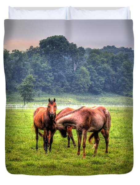 Horses Socialize Duvet Cover by Jonny D