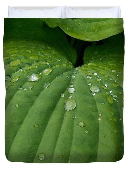 Hosta  N' Rain  Duvet Cover