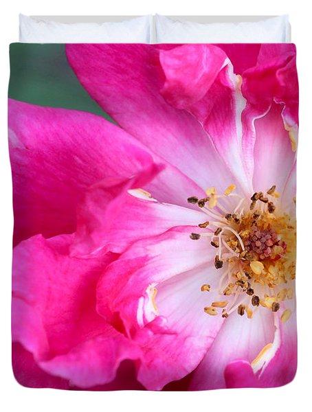 Hot Pink Rose Duvet Cover by Sabrina L Ryan