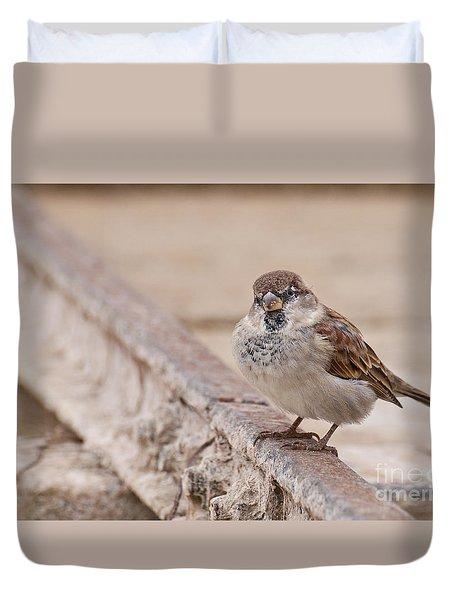 Duvet Cover featuring the photograph House Sparrow by Simona Ghidini