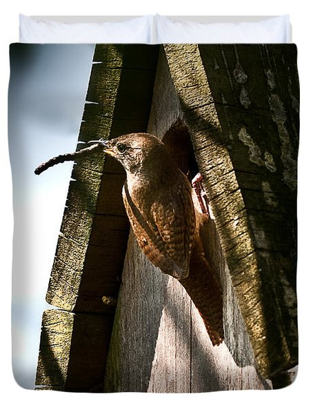 House Wren At Nest Box Duvet Cover
