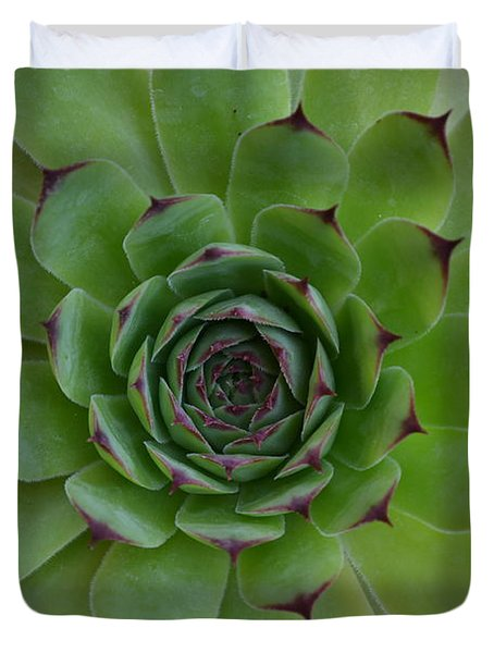 Houseleek Sempervivum Duvet Cover