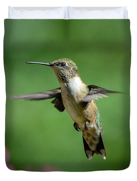 Hovering Hummer Duvet Cover by Amy Porter