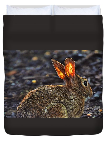 How Bout Them Ears Duvet Cover by Dan Friend