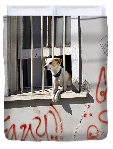 How Much Is That Doggie In The Window? Duvet Cover by Kurt Van Wagner