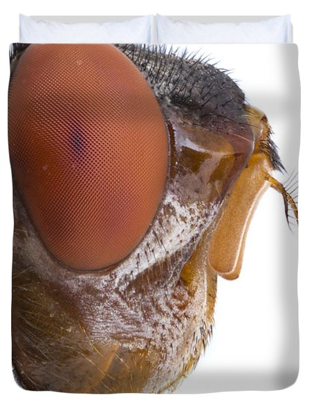 Human Botfly Belize Duvet Cover