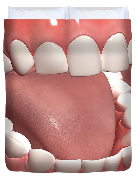 Human Mouth Open, Showing Teeth, Gums Duvet Cover by Stocktrek Images
