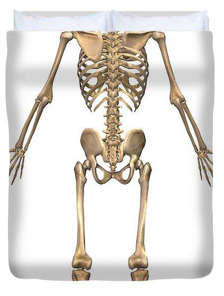 Human Skeletal System, Back View Duvet Cover by Stocktrek Images