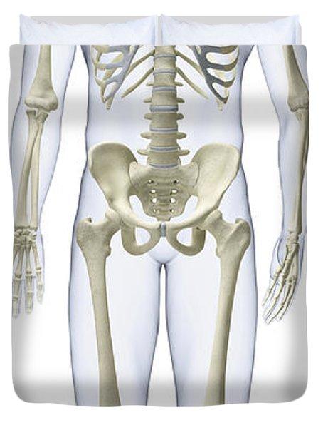 Human Skeleton, Illustration Duvet Cover