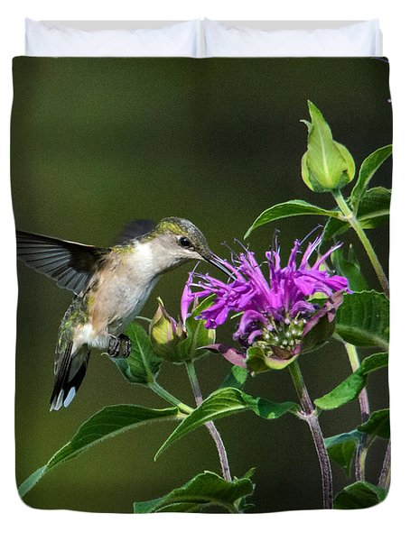Hummer On Bee Balm Duvet Cover
