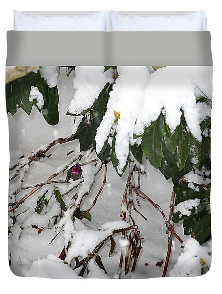 Humming Bird And Snow Duvet Cover