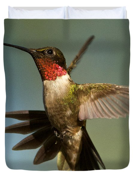 Hummingbird Beauty Duvet Cover
