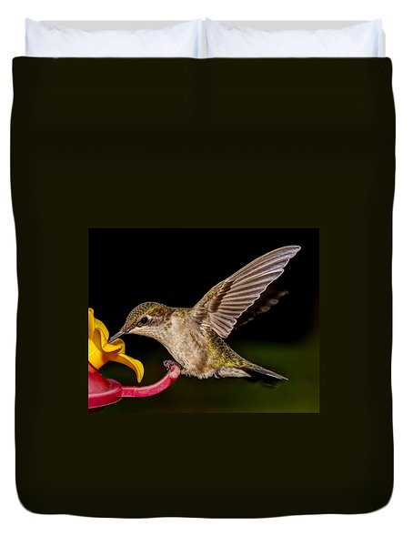 Ruby Throated Hummingbird Duvet Cover by Brian Caldwell