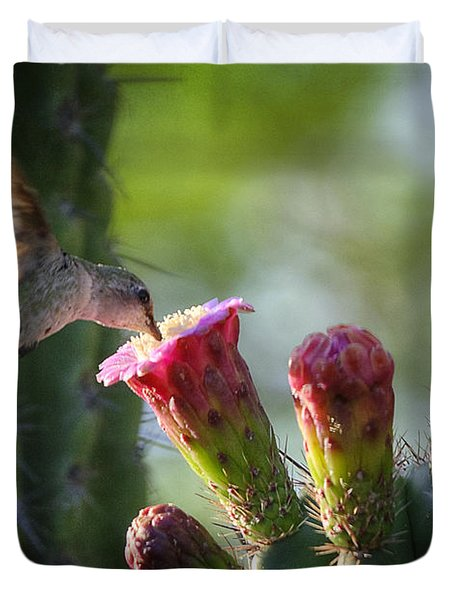 Hummingbird Breakfast Southwest Style  Duvet Cover