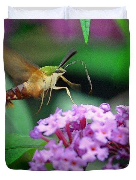 Hummingbird Clearwing Moth Duvet Cover by Gary Keesler