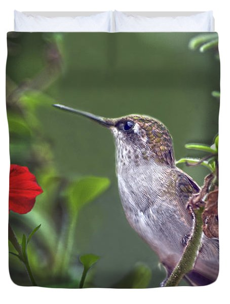 Hummingbird Delight Duvet Cover by Sandi OReilly