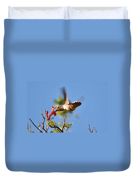 Hummingbird Feeding Duvet Cover