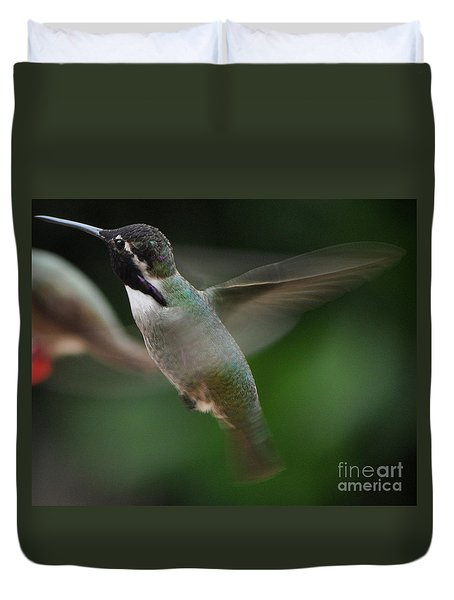 Duvet Cover featuring the photograph Hummingbird Male Anna In Flight Over Perch by Jay Milo