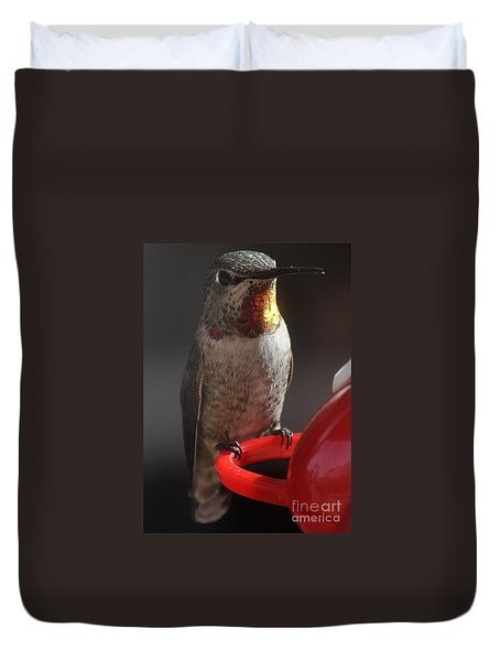 Duvet Cover featuring the photograph Hummingbird Female Anna by Jay Milo