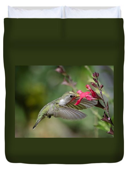 Hummingbird Heaven  Duvet Cover by Saija  Lehtonen